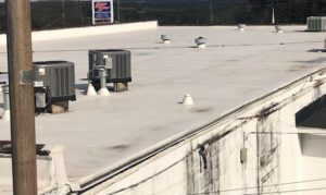 Commercial Roofing | Commercial Roofers Southpaw Roofing – Augusta GA